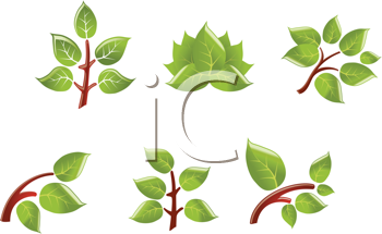 Royalty Free Clipart Image of a Set of Leaves