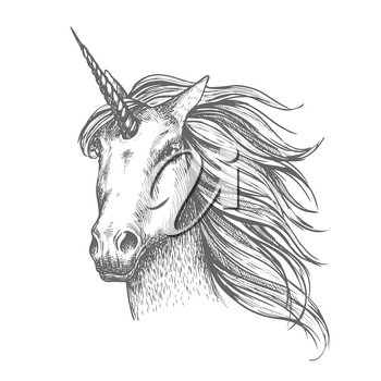Unicorn head sketch. Mythical horse, heraldic equine head with horn and wavy mane. Mythic symbol of fantasy horse for astrology, fairytale story design. White mythical heraldic isolated horse head wit