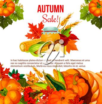 Autumn season sale offer poster for Thanksgiving Day holiday. Fall harvest pumpkin, corn vegetable and apple fruit in cornucopia with autumn leaf, mushroom, cranberry and honey promotion banner design