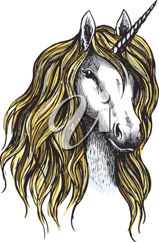 Unicorn horse vector sketch icon. Magic or mystic fairy horse with horn and waving mane. Isolated fantastic unicorn stallion symbol for equine sport or equestrian races contest exhibition
