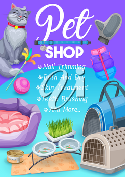Pet shop, cat care items poster with kitten and goods for grooming and feed. Vector ad promo card for nails trimming, bath and dry, skin treatment and teeth brushing service for domestic feline animal