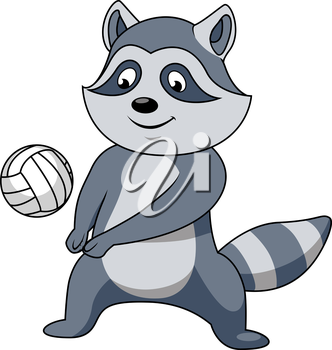 Cartoon raccoon player character with volleyball ball for sport or mascot theme design