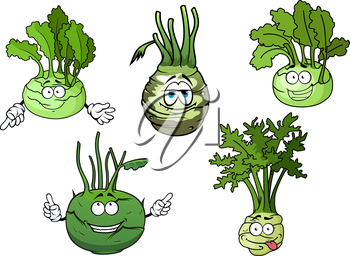 Cartoon funny crunchy kohlrabi cabbages vegetable characters with green rounded heads and fresh leaves. Addition to recipe book, vegetarian menu or kitchen interior accessories design