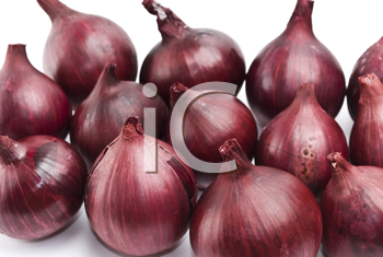 Royalty Free Photo of Red Onions