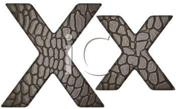 Royalty Free Clipart Image of Alligator Skin Font X Lowercase and Capital Letters