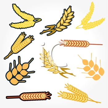 Royalty Free Clipart Image of Grains