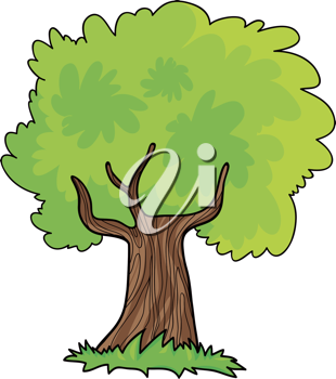 Royalty Free Clipart Image of a Leafy Tree