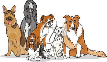 Cartoon Illustration of Cute Purebred Dogs or Puppies Group