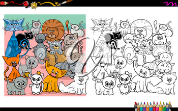 Cartoon Illustration of Funny Cat Characters Coloring Book Activity