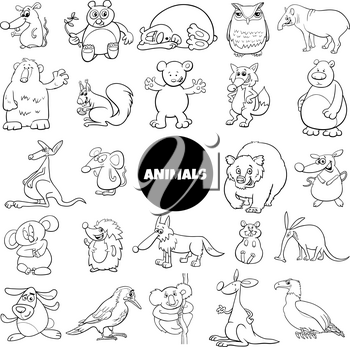 Black and White Cartoon Illustration of Funny Wild Animal Characters Large Set Coloring Book Page