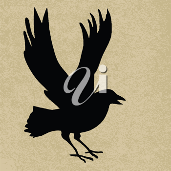 Royalty Free Clipart Image of a Raven