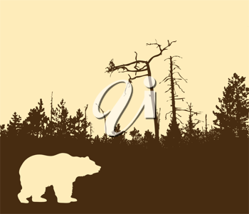 Royalty Free Clipart Image of a Bear