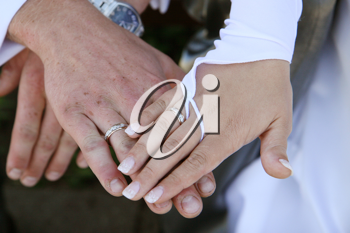 Royalty Free Photo of a Couple With Wedding Rings