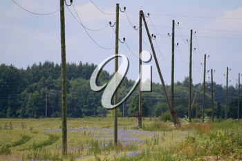 High-voltage power line on wooden poles glade near the forest. Electricity poles in field. Grass, forest and blue sky background, Latvia.