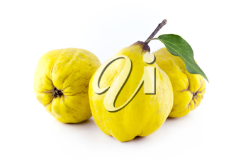sweet quinces with leaves and slice on white background