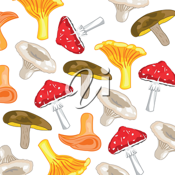 Pattern from edible and poisonous mushroom on white background is insulated
