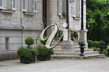 Beautiful shrub in planters in the shape of a ball next to the steps in front of a house in Europe