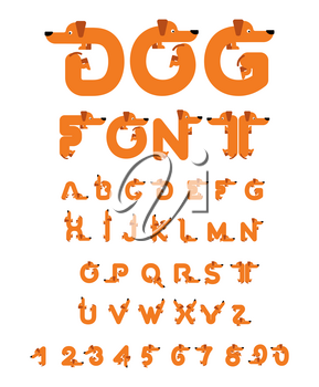 Dog font. Dachshund alphabet. Lettering home animal. ABC pet