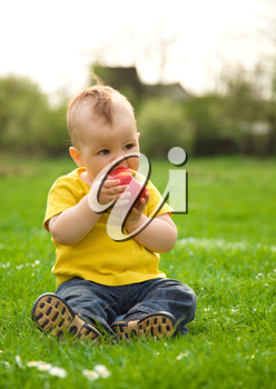 Royalty Free Photo of a Little Boy Eating an Apple Outside