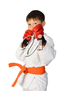 Royalty Free Photo of a Young Boy Doing Martial Arts