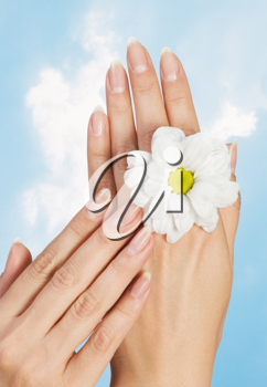 image of beautiful female hands with flower