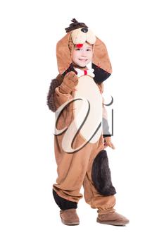 Cheerful little boy posing in a dog costume. Isolated on white