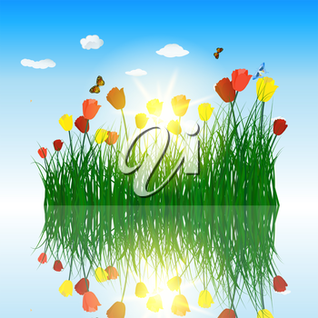Tulips in grass with reflection in water. Eps 10 vector illustration with transparency and meshes.
