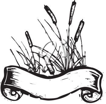 Royalty Free Clipart Image of a Patch of Reeds With a Banner