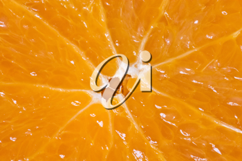 Royalty Free Photo of an Orange Slice