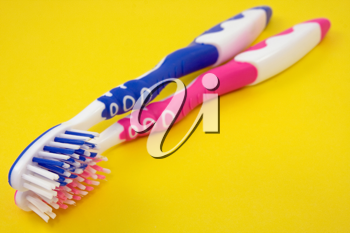 Royalty Free Photo of Two Toothbrushes