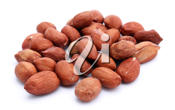 A lot of not cleared peanuts on the white background