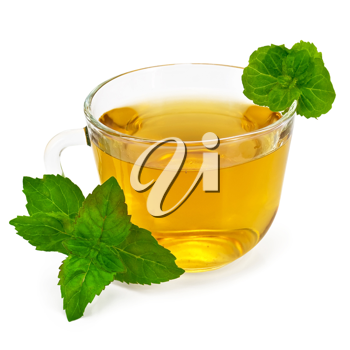 Royalty Free Photo of Herbal Tea With Mint