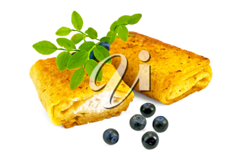 Two pancakes with cottage cheese, blueberries and a branch isolated on white background