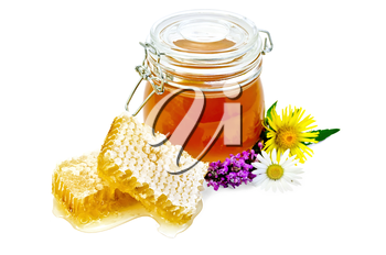 Honeycomb with fragrant honey, wildflowers, a glass jar isolated on white background