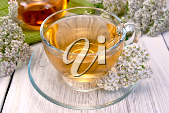 Yarrow tea in a glass cup and teapot, fresh yarrow flowers on a background of light wooden plank