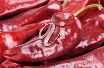 Royalty Free Photo of Hot Peppers