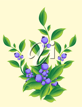Royalty Free Clipart Image of Berries on a Plant