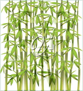 Royalty Free Clipart Image of a Bamboo Background