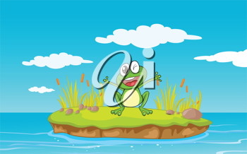 illustration of a frog and a water in a beautiful nature