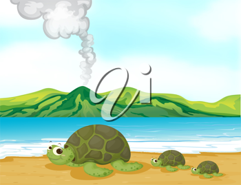 Illustration of a volcano beach and turtles
