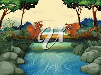 Illustration of the two squirrels at the river