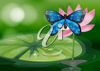 Illustration of a blue butterfly and the pink flower at the pond