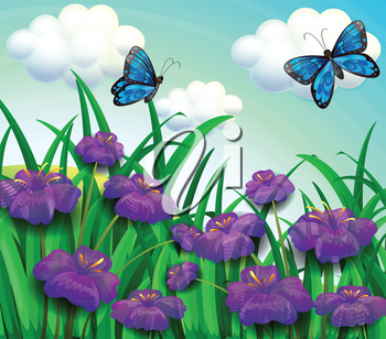 Illustration of the two blue butterflies at the garden with violet flowers