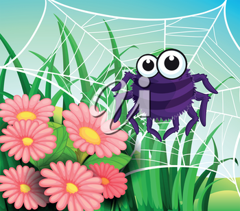 Illustration of a spider web at the garden