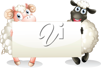 Illustration of the two sheeps holding an empty banner on a white background