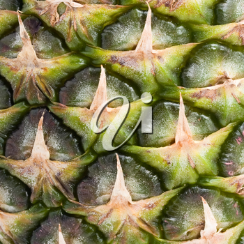 Royalty Free Photo of a Pineapple
