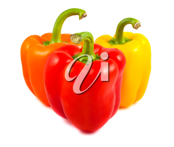 Royalty Free Photo of Three Fresh Bell Peppers