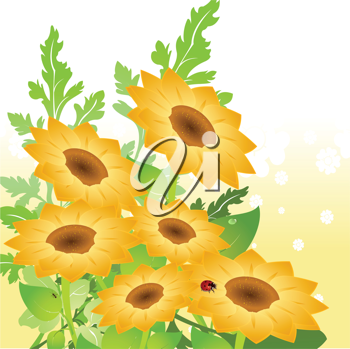 Royalty Free Clipart Image of Sunflowers