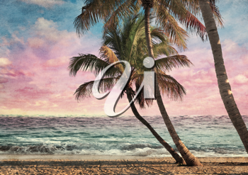 Royalty Free Photo of a Tropical Beach at Sunset
