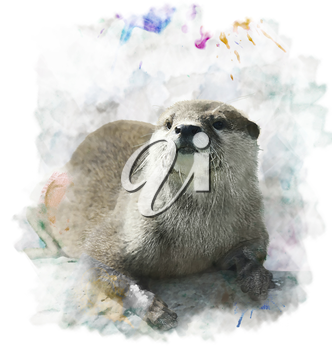Watercolor Digital Painting Of  Otter Portrait